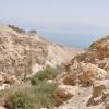 The Dead Sea En Gedi View