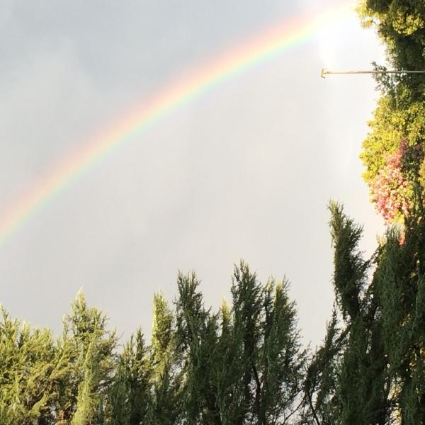 Rainbows/Promises